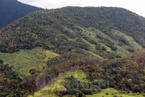 http://banco.agenciaoglobo.com.br/Imagens/Preview/200608/ab11da76-28d0-4983-b020-ac7543e884be.jpg